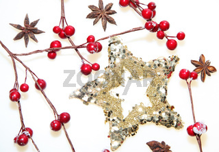 Christmas decoration stars with red berrys and ani
