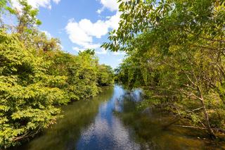 Panama Las Zambranos, Papayal creek