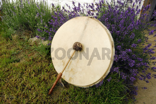 drum in shamanism on a meadow
