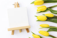 Yellow tulips flat lay on white background, empty picture frame, greeting card