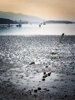 Low tide at the beach of Palit bay of Eufemija on island of Rab Croatia