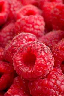 Ripe rasberry background. Close up macro shot of raspberries