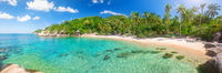 Panorama of tropical beach with coconut palm tree