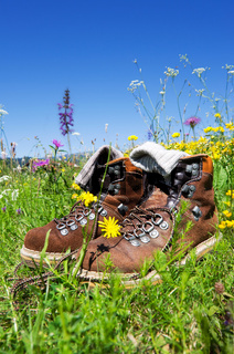 hiking boots meadow