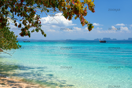 Sea background. Tropical island nature