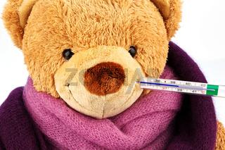 Teddy Bär mit Fieberthermometer