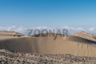land desertification closeup