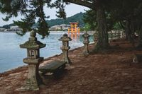 Park with bench under evergreen trees with view to the the floating Torii Gate in Miyajima, Hiroshima, Japan