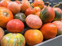 Orange pumpkins at farmer market