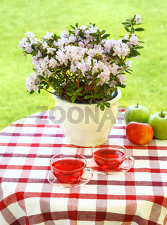 Two cups of tea served in the garden