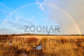 Regenbogen im Neustaedter Moor