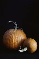 Ripe pumpkins on black blackground