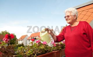 alte frau giesst Blumen auf dem Balkon