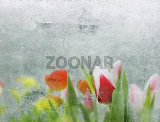 tulpen und frühlingsblumen mit collagierter textur