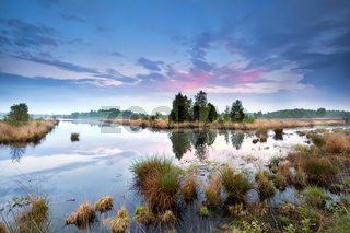 sunset over swamp in Drenthe