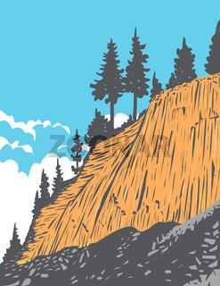 Devils-Postpile-National-Monument-WPA-1
