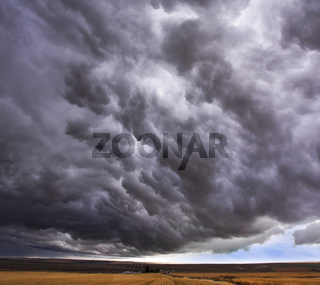 Enormous storm cloud above an  field