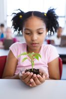 African american girl holding a plant seedling while sitting on her desk in class at school