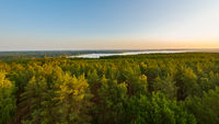 View of the lake Schwielowsee and vast forest area in Brandenburg, Germany seen from lookout platform Wietkiekenberg in early morning sunrise