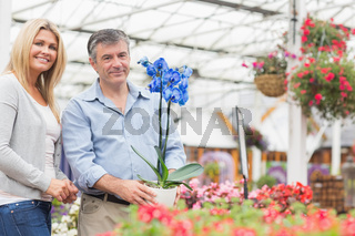 Couple smiling while choosing a plant