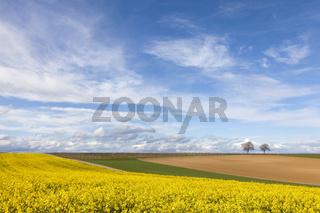Landschaft im Frühling