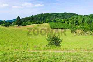 landscape of low Eifel mountains