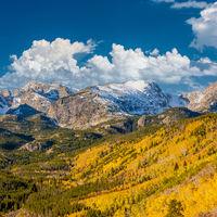 Aspen grove at autumn in Rocky Mountains