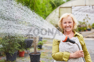 Ältere Gärtnerin mit Brause beim Wässern von Pflanzen