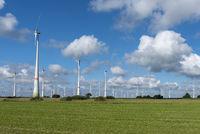 Windkraftpark bei Lütetsburg