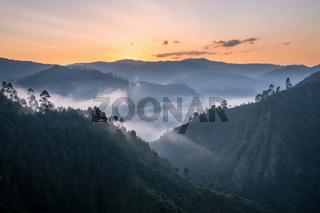 Landscape of Bwindi National Park, Uganda