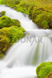 white water rapid creek