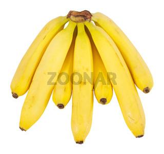 Mehrere gelbe Bananen vor einem weißen Hintergrund