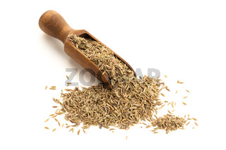 Cumin seeds on wooden spoon isolated on white background. Cuminum cyminum