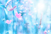 Beautiful wildflowers, butterfly in the dreamy meadow. Delicate pink and blue colors pastel toned. Shallow depth macro background. Nature floral springtime