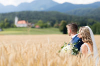 Bride hugs groom tenderly in wheat field somewhere in Slovenian countryside.