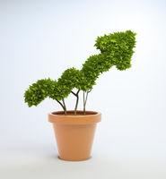 Potplant shaped like a graph
