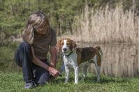 Beagle am kleinen Moorweiher
