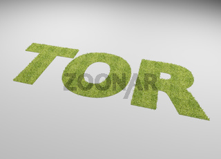 The German word goal with a lawn texture on a white background