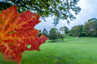 Looking along a autumn colored leaf to the Monopteros temple in the background in Munichs Englischer Garten.