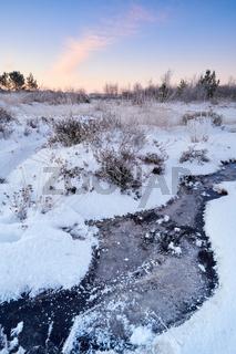 Neustaedter Moor im Winter