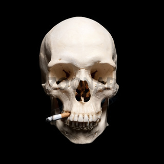 Danger Symbol. Human scull with cigarette