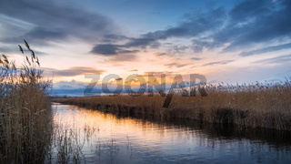 dramatic sunset on a canal at lake Neusiedlersee with reeds on the shore