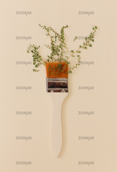 Paint brush with white handle and plant with green small leaves on beige studio background