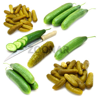 Collection of fresh, marinated  cucumbers