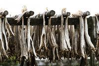 Drying racks with stock fish