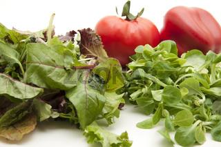 Mischsalat mit Tomate und Paprika
