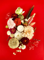 Flat lay of natural cosmetic products on red background