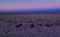 Panorama of ship cemetery at sunset near Moynaq, Karakalpakstan, Uzbekistan