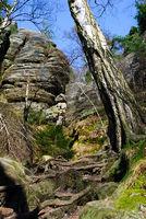 sächsische schweiz wanderweg