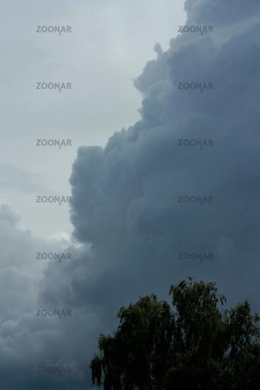 dunkle Regenwolke mit Baumkrone